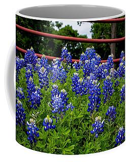 Texas Bluebonnets In Ennis Coffee Mug