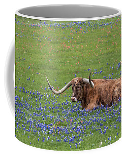 Texas Longhorn And Bluebonnets Coffee Mug