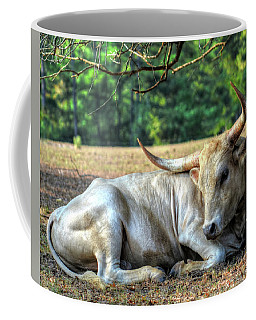 Texas Longhorn Gentle Giant Coffee Mug