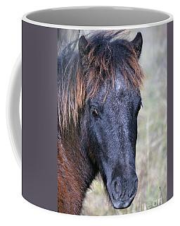Texas Miniature Horse Coffee Mug by Savannah Gibbs