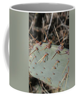 Coffee Mug featuring the photograph Texas Spikes by Laddie Halupa