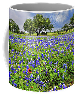 Texas Spring  Coffee Mug