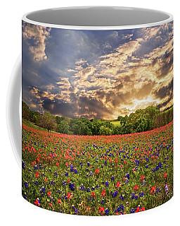 Texas Wildflowers Under Sunset Skies Coffee Mug by Lynn Bauer