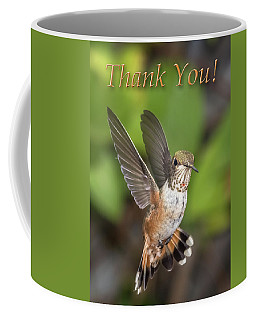 Thank You - Female Rufous Hummingbird  Coffee Mug