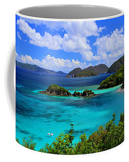 Thank You St. John Usvi Coffee Mug by Fiona Kennard