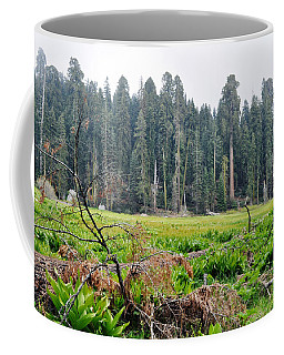 Coffee Mug featuring the photograph Tharps Log Meadow by Kyle Hanson