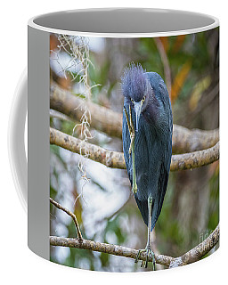That Feels Great - Little Blue Heron Coffee Mug