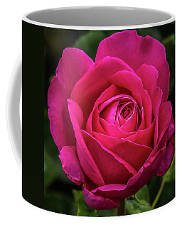 That Perfect Pink Rose Coffee Mug by Yeates Photography