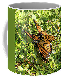 That Time Of Year Coffee Mug by Jane Luxton