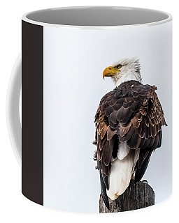 The Alert Coffee Mug by Yeates Photography