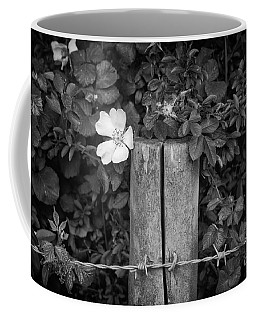 The Allotment Project - Dog Rose Coffee Mug