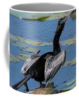 The Bird, Anhinga Coffee Mug