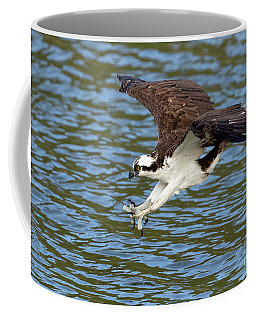 The Approach Coffee Mug