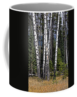Coffee Mug featuring the photograph The Aspens by John Gilbert