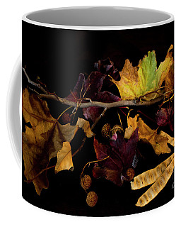 The Autumn Branch Coffee Mug
