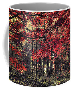 The Autumn Colors Coffee Mug