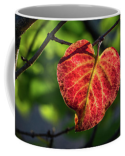 Coffee Mug featuring the photograph The Autumn Heart by Bill Pevlor