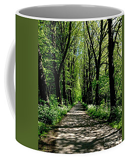 The Avenue Of Limes At Mill Park 3 Coffee Mug