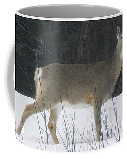 The Band Matriarch Coffee Mug