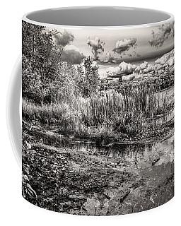 The Basin And Snails Coffee Mug by Bob Orsillo