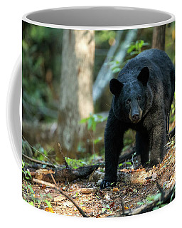 Coffee Mug featuring the photograph The Bear by Everet Regal