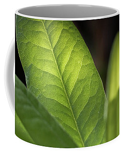 The Beauty Of A Leaf - Coffee Mug
