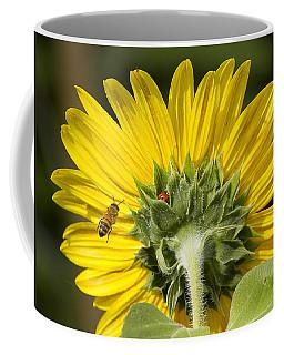 The Bee Lady Bug And Sunflower Coffee Mug