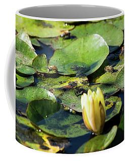 The Bees Of San Tan Coffee Mug