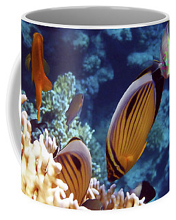 The Best Of The Red Sea Coffee Mug