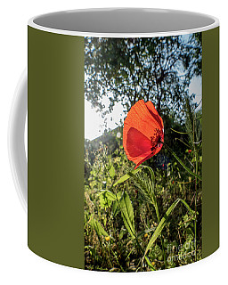 The Big Red Coffee Mug