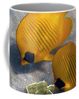 The Bluecheeked Butterflyfish Coffee Mug
