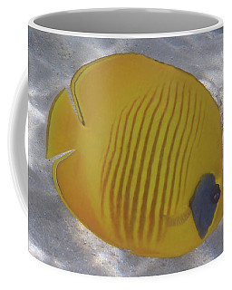 The Bluecheeked Butterflyfish Red Sea Coffee Mug