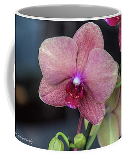 The Blushing Orchid Coffee Mug by Nance Larson