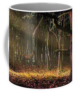 Coffee Mug featuring the photograph The Border by Dmytro Korol