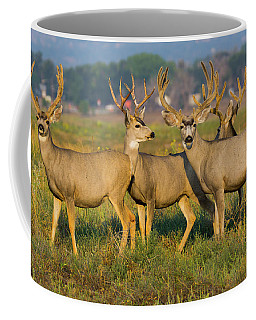 Coffee Mug featuring the photograph The Boys by John De Bord