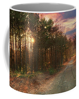 Coffee Mug featuring the photograph The Brown Path Before Me by Lori Deiter