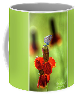 The Butterfly And The Coneflower Coffee Mug