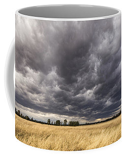 The Calm Before The Storm Coffee Mug