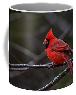 The Cardinal And The Sunflower Seed Coffee Mug