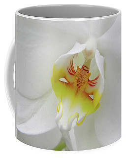 The Cat Side Of An Orchid Coffee Mug