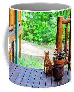 The Cats Meow Coffee Mug by Nancy Marie Ricketts