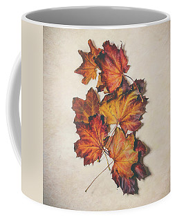 The Colors Of Fall Coffee Mug