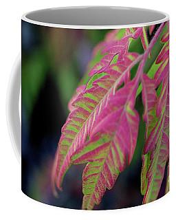 The Colors Of Shumac 9 Coffee Mug by Victor K