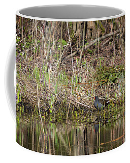 The Common Moorhen Coffee Mug