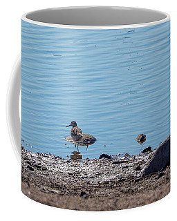 The Common Sandpiper Coffee Mug