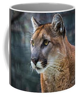 The Cougar Coffee Mug