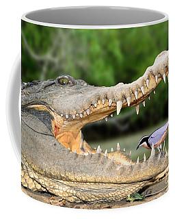 The Crocodile Bird Coffee Mug