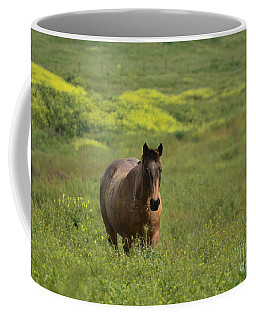 The Curious Working Horse Coffee Mug