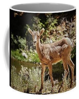The Cute One Coffee Mug