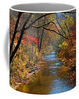 The Dan River Coffee Mug by Kathryn Meyer